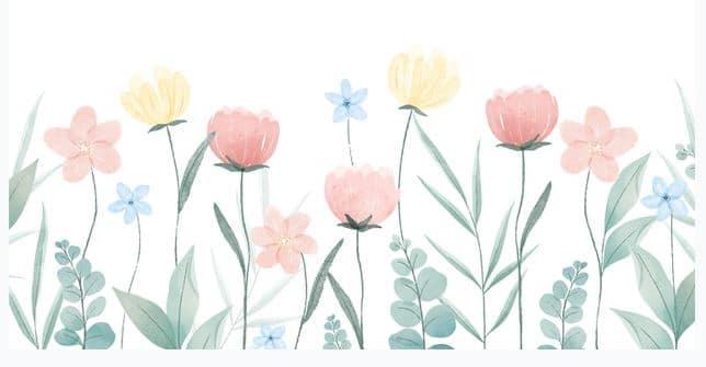Çanta Çiçeğinin Sırrı