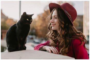 Kırmızı Kız İle Kedisi 2