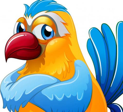 Pembe Papağan